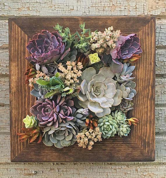 Gift Baskets Are Overrated - Succulent Planter